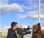 Изображение в Развлечения и досуг Организация праздников Профессиональная  видеосъемка свадеб,   юбилеев, в Челябинске 0