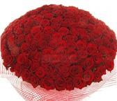 Foto в Домашние животные Растения Сделайте своей девушке незабываемый подарок. в Москве 5545