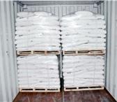 Фото в Домашние животные Корм для животных Реализуем мел кормовой для подкормки животных в Тюмени 10