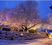 Изображение в Отдых и путешествия Туры, путевки Канун Нового года - самое удивительное, самое в Великом Новгороде 26347