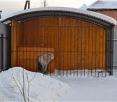 Фотография в Домашние животные Товары для животных Продажа и изготовления вольеров для животных в Братске 0