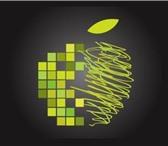 Изображение в Электроника и техника Телефоны Ремонт техники Apple любой сложности от программного в Кургане 500