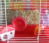 Фото в Домашние животные Товары для животных Продам двухэтажную клетку, в которой вашим в Чите 500