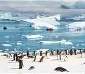 Изображение в Отдых и путешествия Туры, путевки Новый год 2018 в Антарктиде на мега-яхте в Новосибирске 0