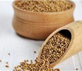 Foto в Домашние животные Растения ООО «Кубань Агро» предлагает к реализации:Семена в Краснодаре 80