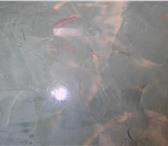 Фотография в Строительство и ремонт Ремонт, отделка Выполняю отделку квартир. Шпатлевка, покраска, в Орле 500