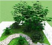 Фото в Домашние животные Растения Предлагаем Вам красивое и быстрое решение в Смоленске 0