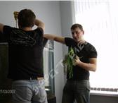 Фото в Домашние животные Рыбки Персонально можем сделать уборку или чистку в Ростове-на-Дону 0