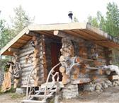 Изображение в Строительство и ремонт Строительные материалы продам сухостой сосны кеlо из севера Карелии, в Петрозаводске 0