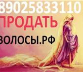 Фото в Красота и здоровье Салоны красоты Дорого покупаем длинные волосы - женские, в Москве 50000